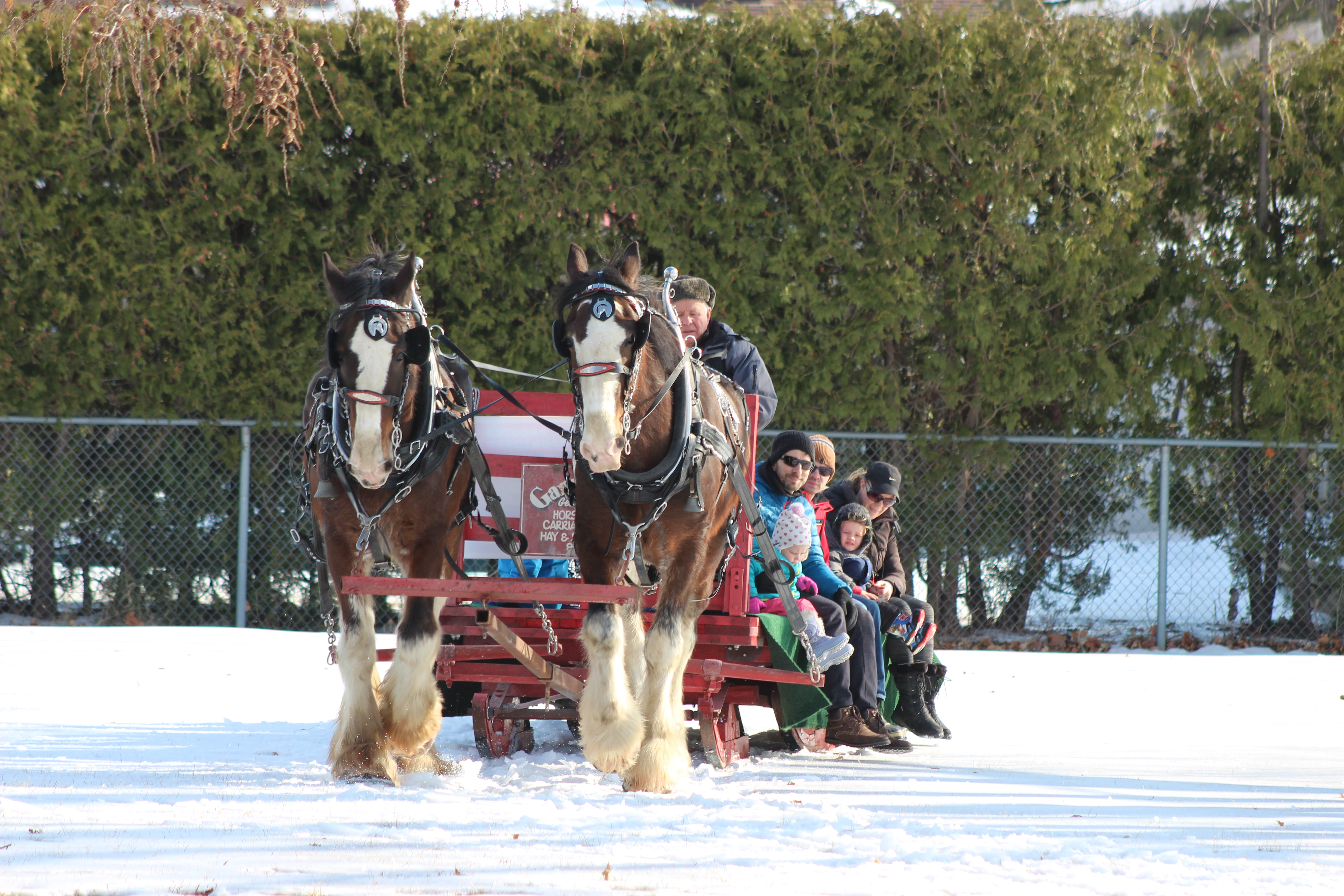 2018 Winter Carnival sleigh ride
